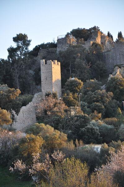 Castle guided tour à Hyères - 0