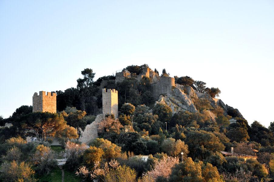 Castle guided tour à Hyères - 1