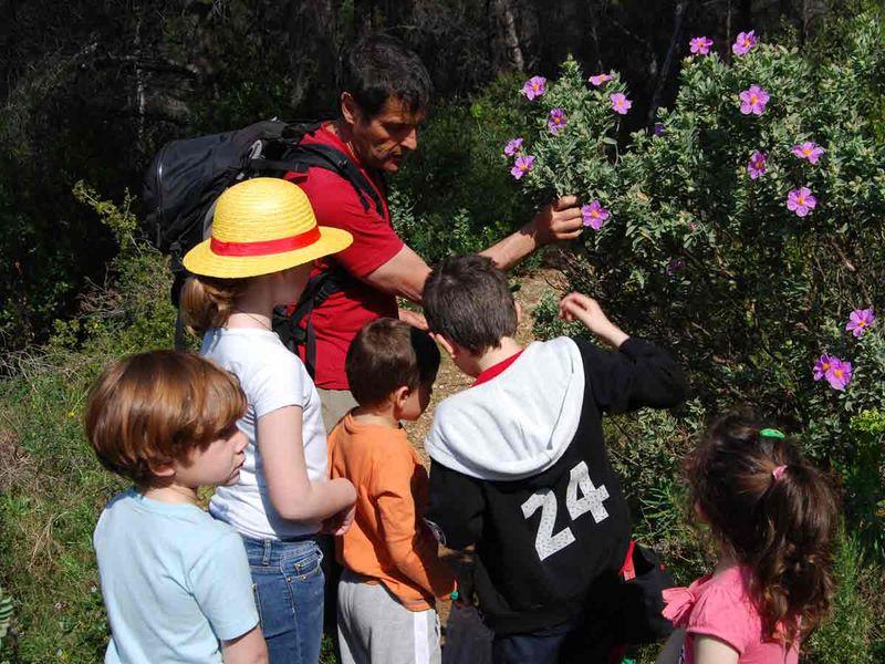 Jeune public / Les petits explorateurs de la colline – Sortie nature à Toulon - 1