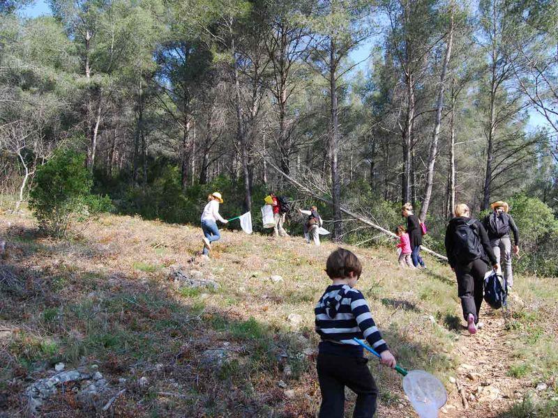 Jeune public / Les petits explorateurs de la colline – Sortie nature à Toulon - 3
