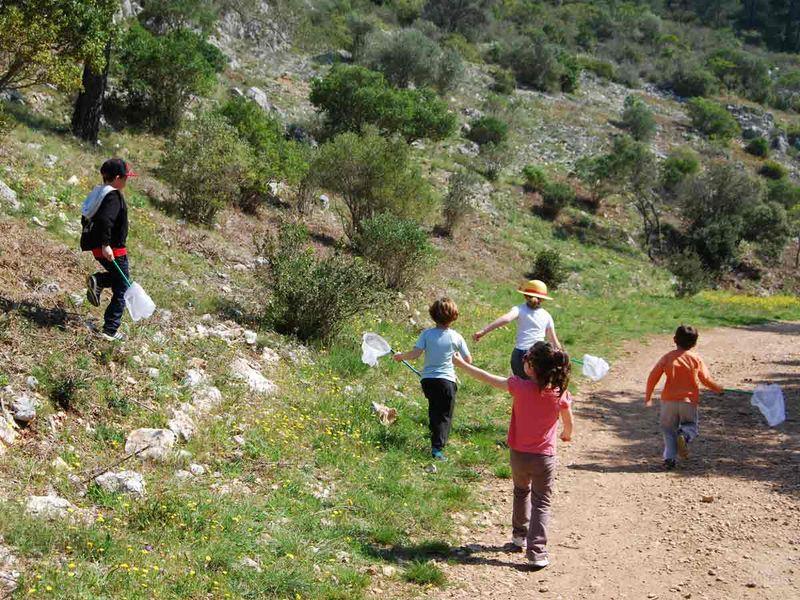 Jeune public / Les petits explorateurs de la colline – Sortie nature à Toulon - 0