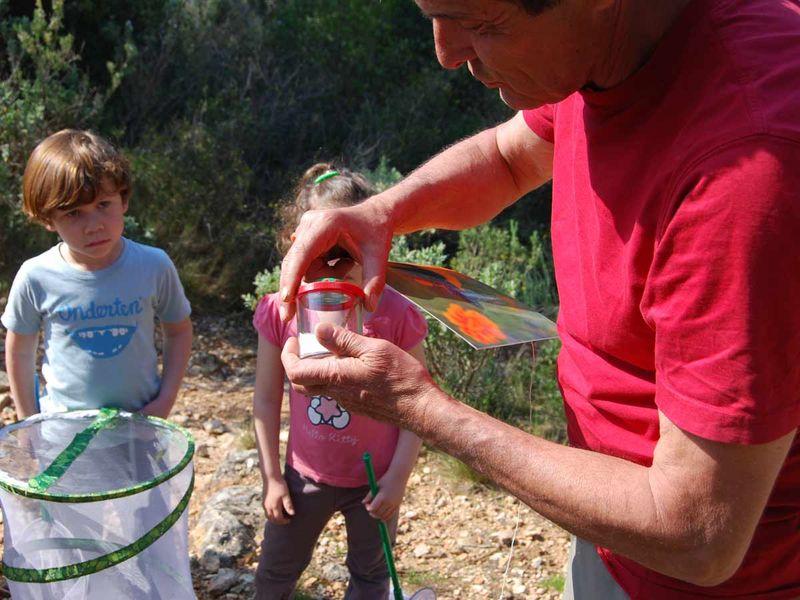 Jeune public / Les petits explorateurs de la colline – Sortie nature à Toulon - 2