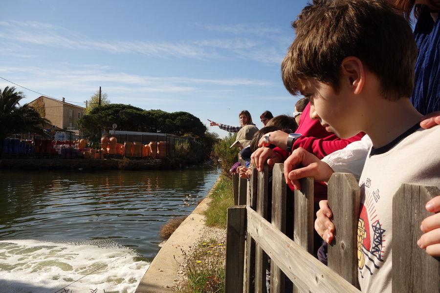 Salt marches history (guided tour for children) à Hyères - 0