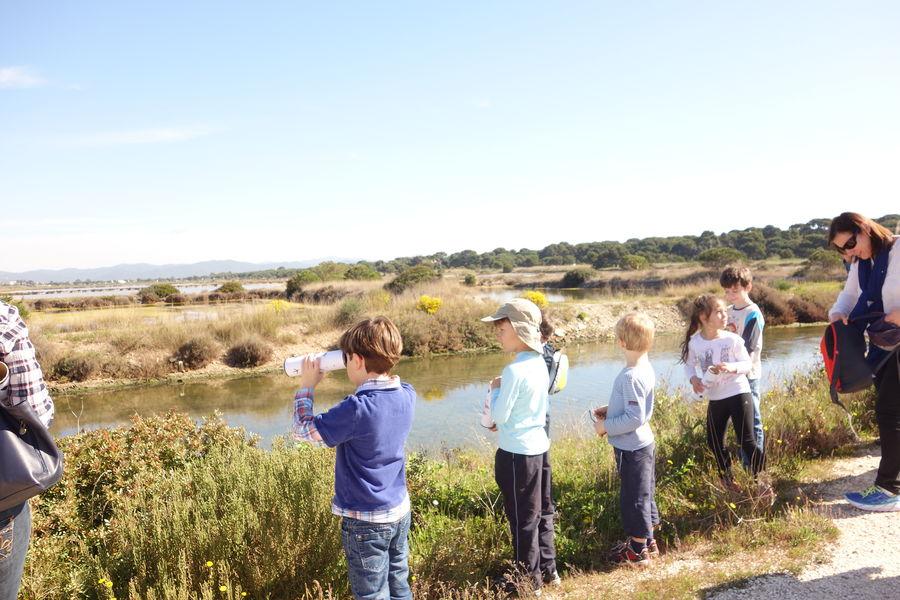 Salt marches history (guided tour for children) à Hyères - 7