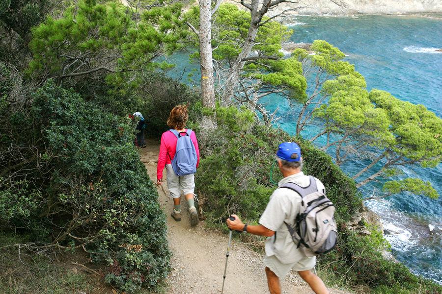 Guided tour on Porquerolles island à Hyères - 0