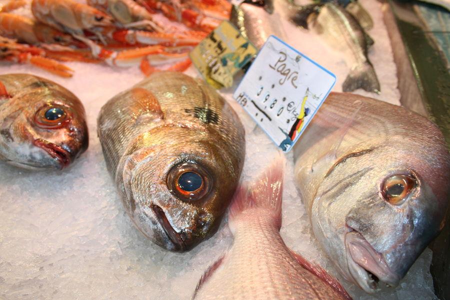 The salins 'Market à Hyères - 11