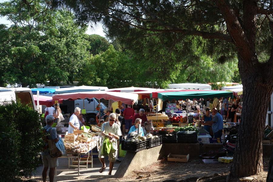 Giens' market à Hyères - 4