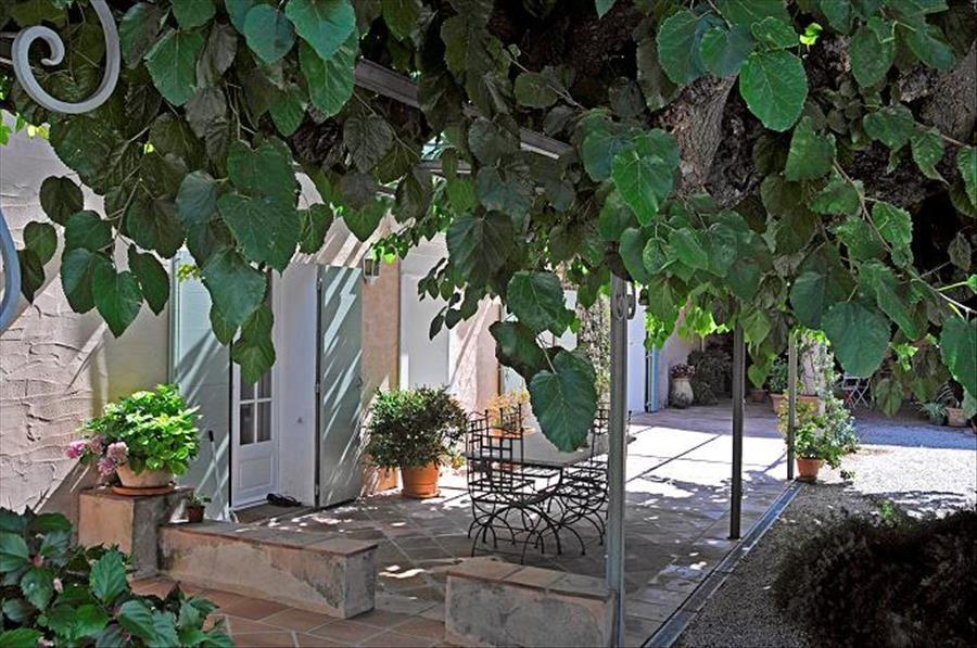 Découverte viticole: domaine Clos Cibonne à Le Pradet - 1