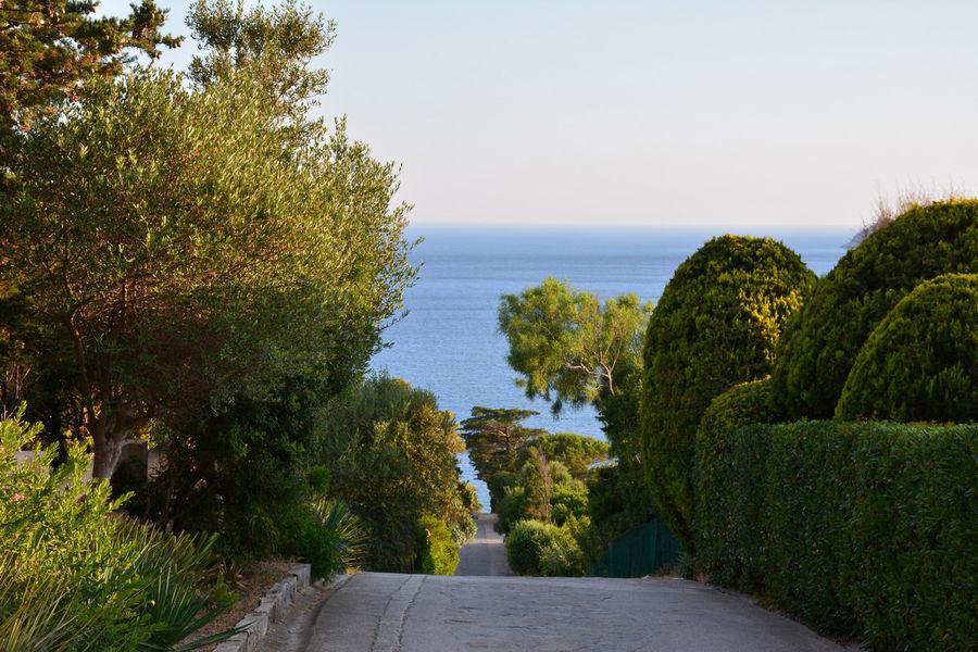 Rendez-vous aux jardins – Le Levant island à Hyères - 2