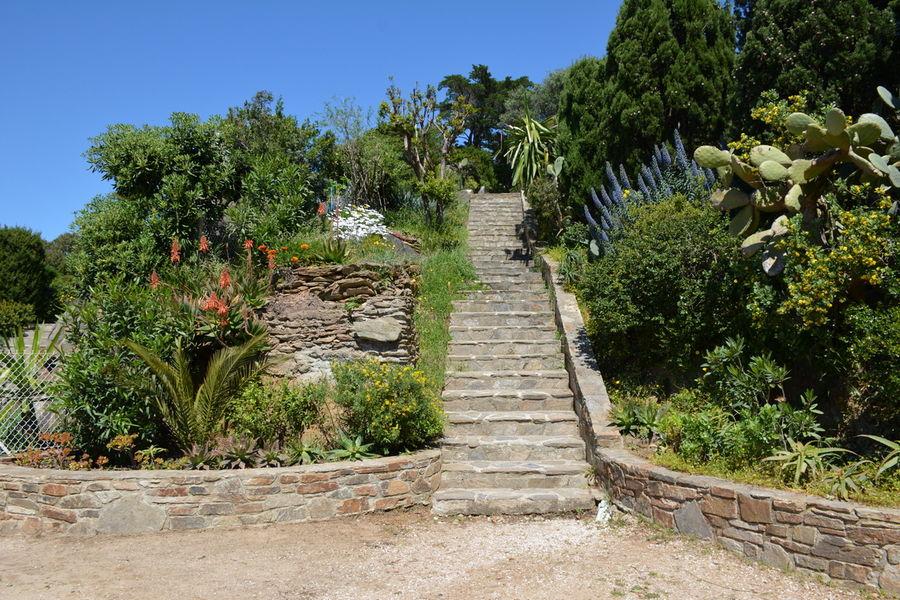 Rendez-vous aux jardins – Le Levant island à Hyères - 4