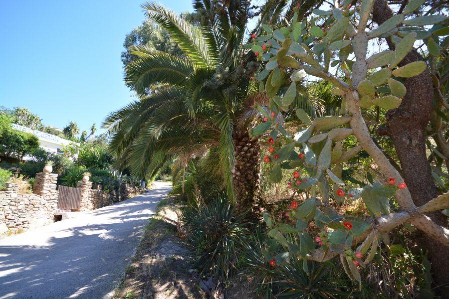 Rendez-vous aux jardins – Le Levant island à Hyères - 7
