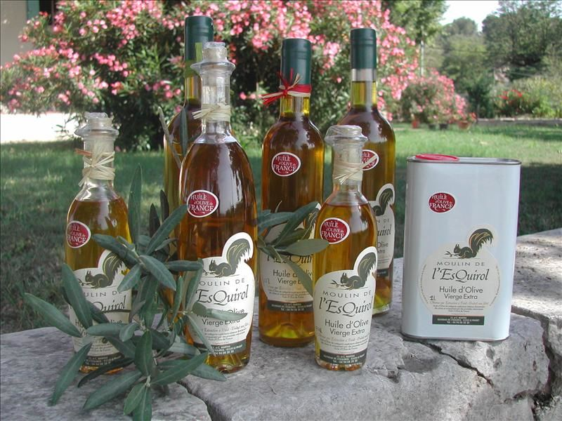 Découverte d'une Oliveraie et d'un Moulin à huiles à Le Pradet - 0