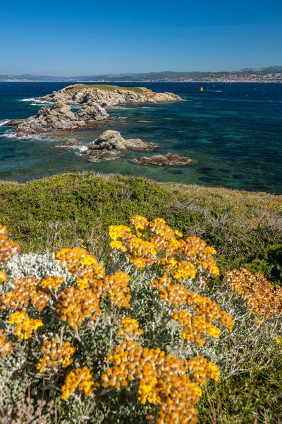 Guided tour: Les Embiez, the aniseed treasure island à Six-Fours-les-Plages - 0