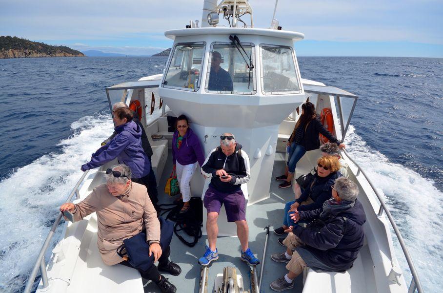 Le circuit des îles (Boat excursion) à Hyères - 3