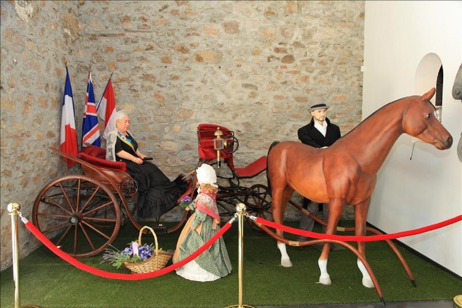 Sur les traces de la Reine Victoria à Hyères - 0