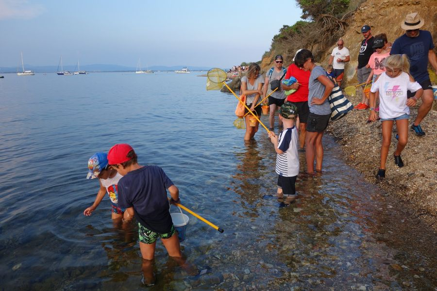 The small coastal course (special children's guided tour) à Hyères - 11