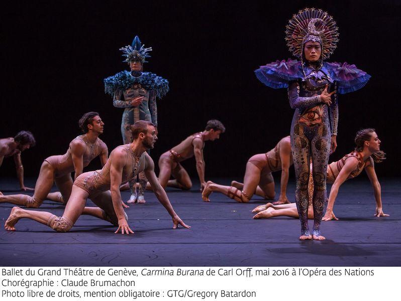 """""""Carmina Burana"""" par le Ballet du grand théâtre de Genève à Ollioules - 0"""