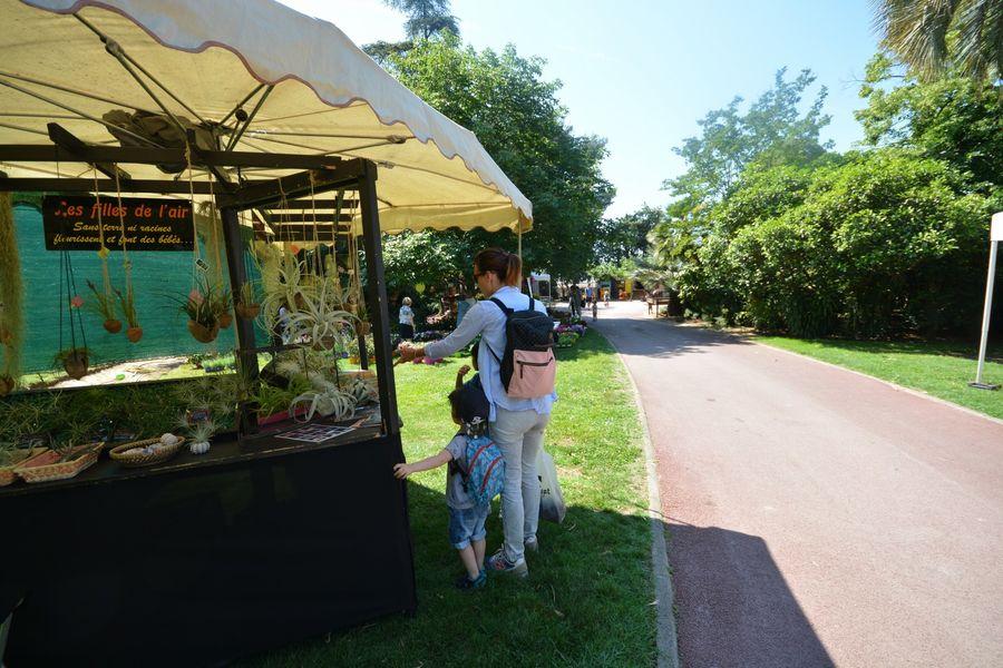 Hyères Gardens à Hyères - 1