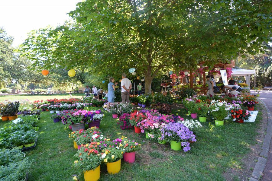 Hyères Gardens à Hyères - 0
