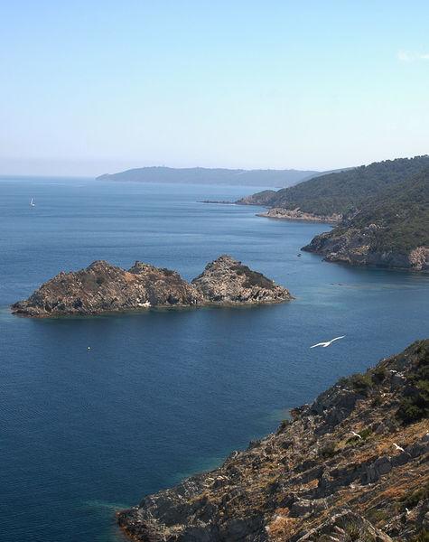 Port Cros, pearl of the Golden Islands à Hyères - 2