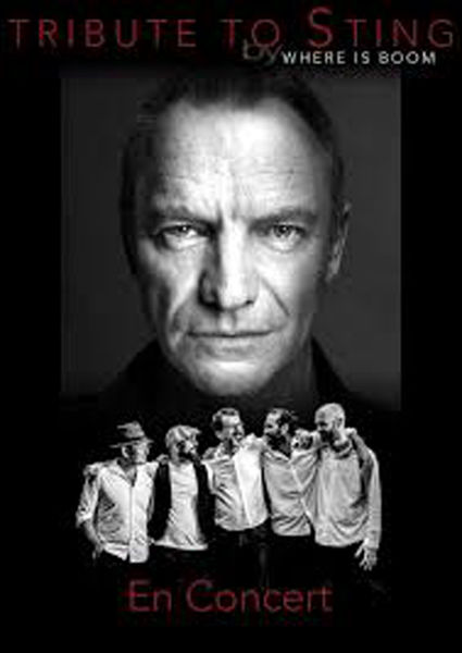 Concert Tribute to Sting à La Seyne-sur-Mer - 0