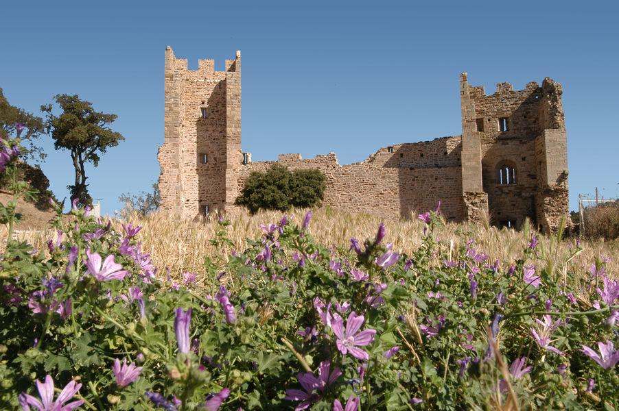 Investigation at hyeres' castle (special children's guided tour) à Hyères - 5