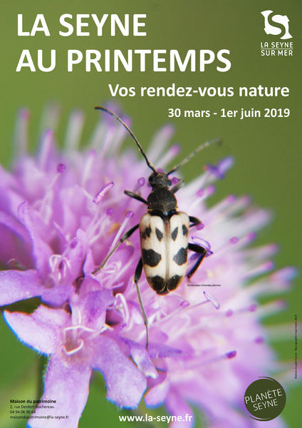 """La Seyne au Printemps : conférence """"Les papillons"""" à La Seyne-sur-Mer - 0"""