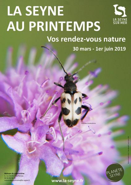 """La Seyne au printemps : conférence """"Les oiseaux d'altitude"""" à La Seyne-sur-Mer - 0"""