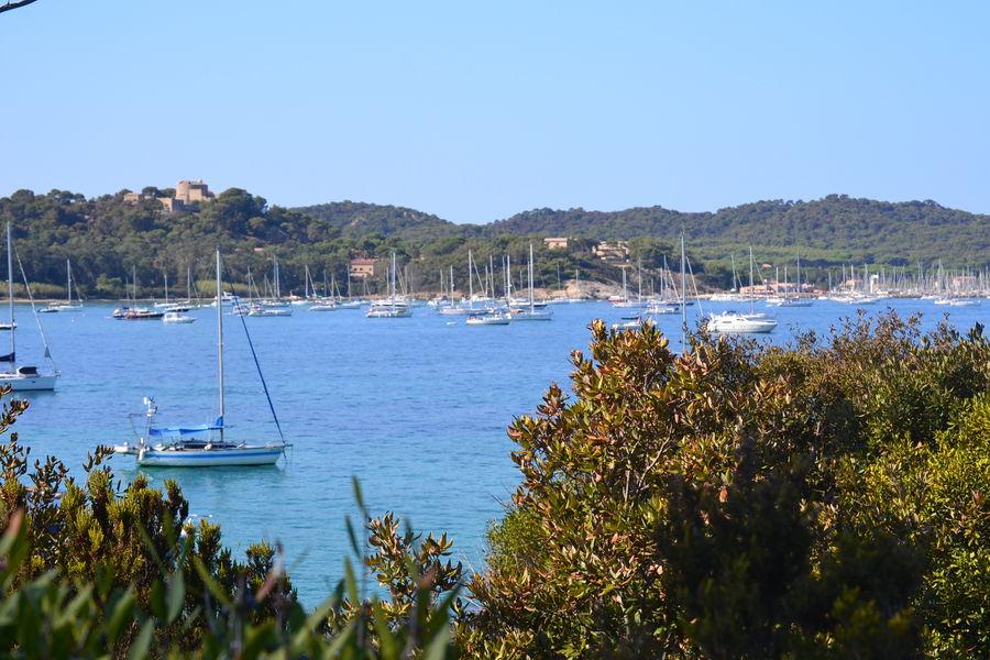 Guided tour on Porquerolles island à Hyères - 3