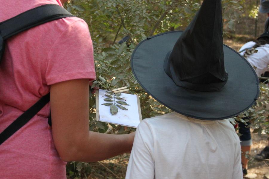 """Sortie enfant """"Dans la peau d'une sorcière"""" à La Seyne-sur-Mer - 4"""