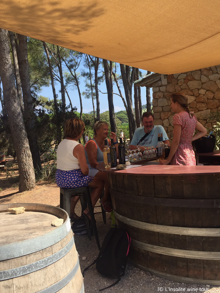 Private wine tour and wine tasting à La Valette-du-Var - 3