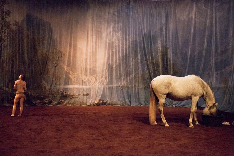 """Théâtre """"Hate – Tentative de duo avec un cheval"""" à Ollioules - 3"""