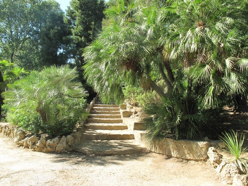 Little tales from the garden (special children's guided tour) à Hyères - 5