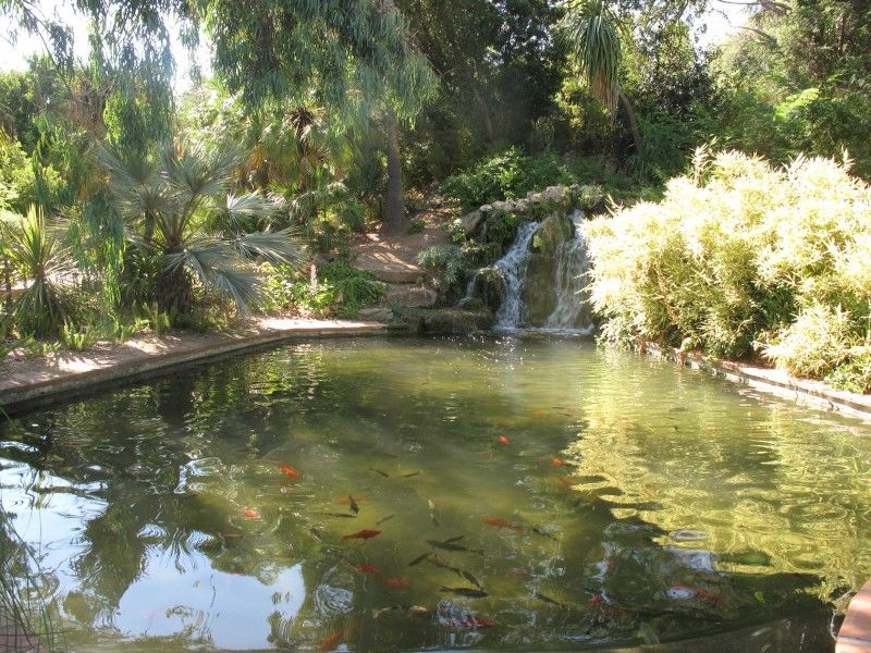 Little tales from the garden (special children's guided tour) à Hyères - 6