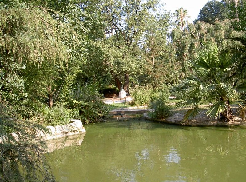 Little tales from the garden (special children's guided tour) à Hyères - 21