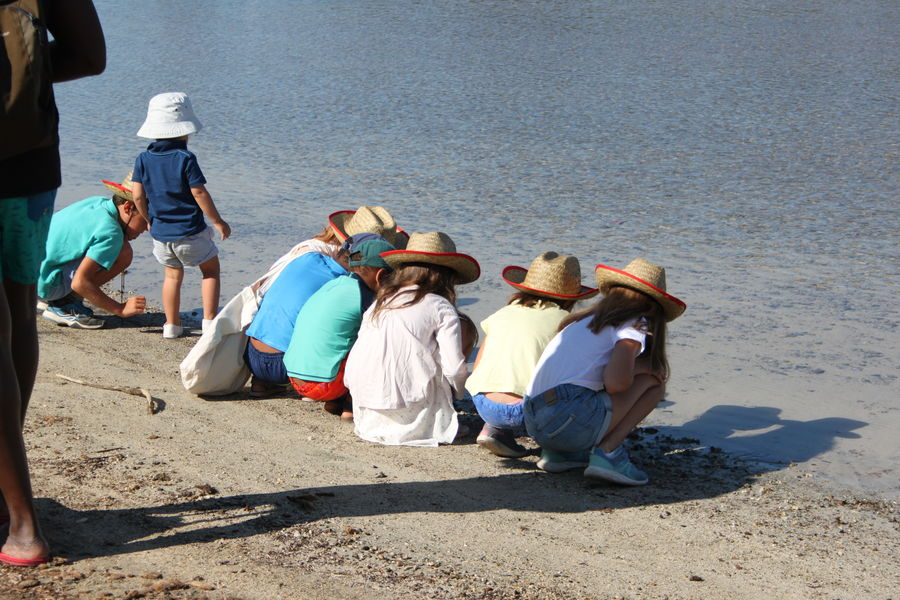 """Kid's field trip """"In the shoes of an explorer"""" à Six-Fours-les-Plages - 0"""