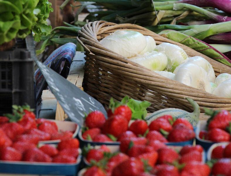 Petit marché d'Aguillon à Toulon - 0