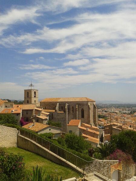 Visite guidée: La collégiale Saint Paul à Hyères - 0