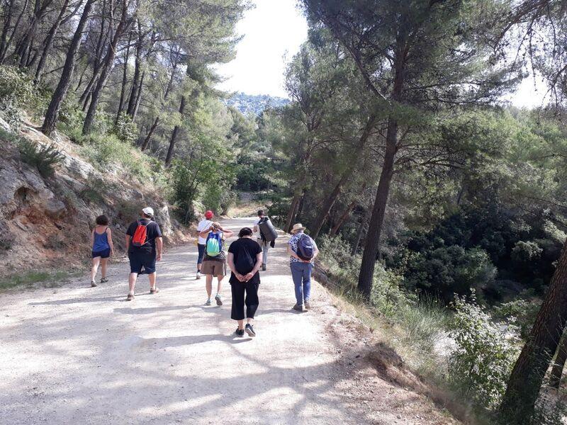 Relaxing walk: sophrology à La Crau - 1