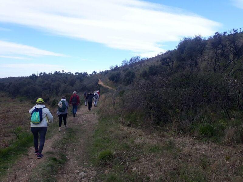 Relaxing walk: sophrology à La Crau - 3