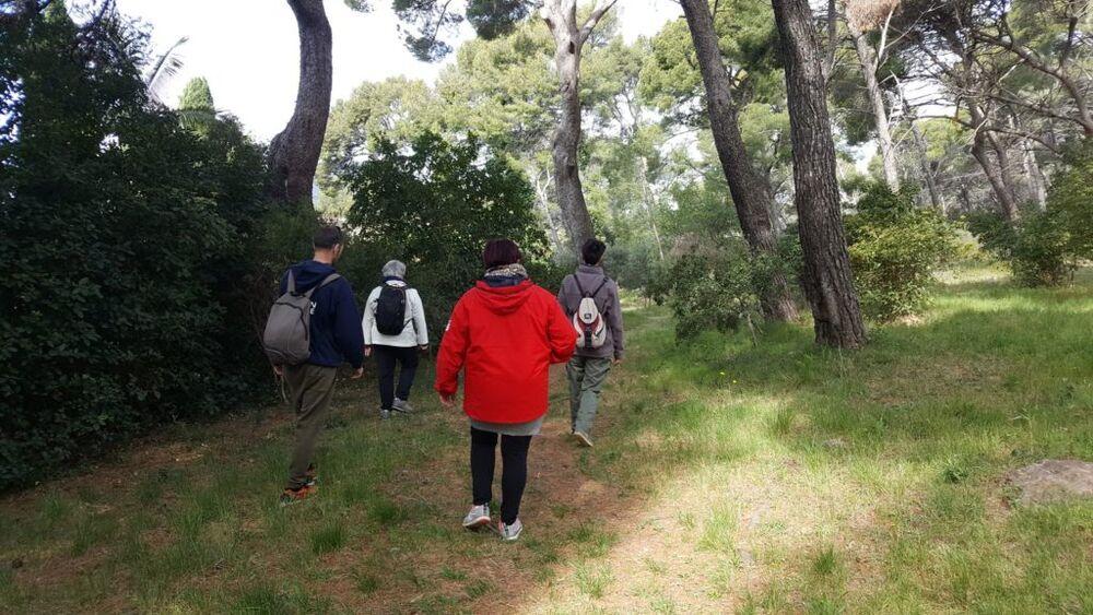 Relaxing walk: sophrology à La Crau - 5