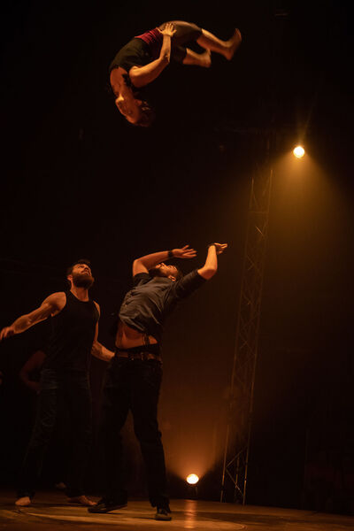 "Circus ""Born to be circus"" by Circo Zoé à La Seyne-sur-Mer - 1"