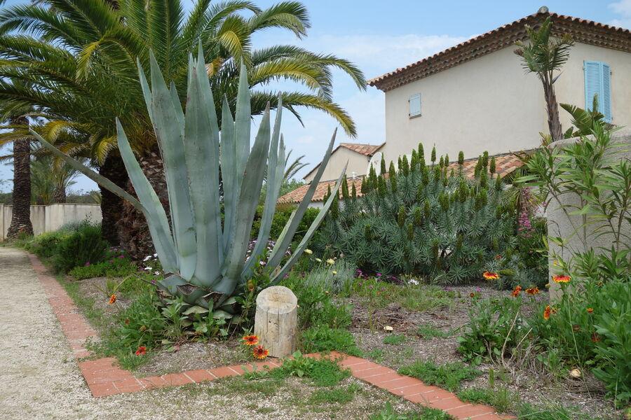 Emmanuel Lopez garden à Hyères - 9
