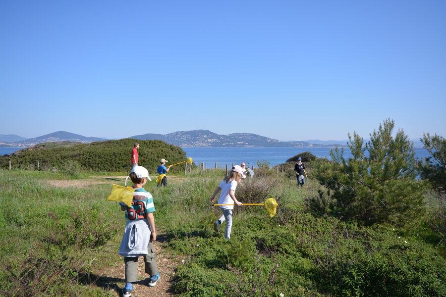 The short course in the bush (special children's guided tour) à Hyères - 1