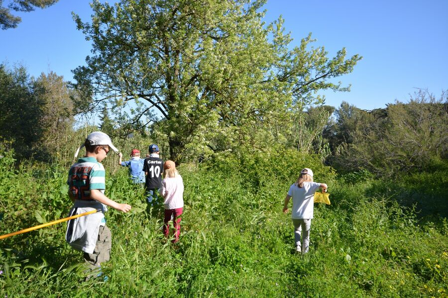 The short course in the bush (special children's guided tour) à Hyères - 5