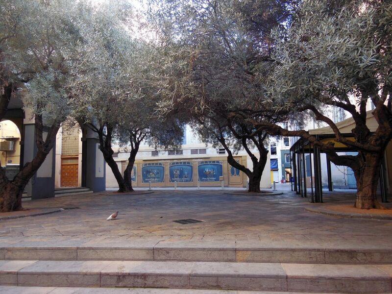 La nature dans la ville à Toulon - 2