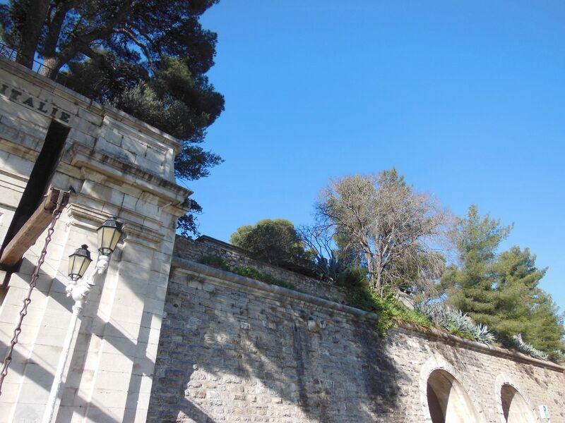La nature dans la ville à Toulon - 4