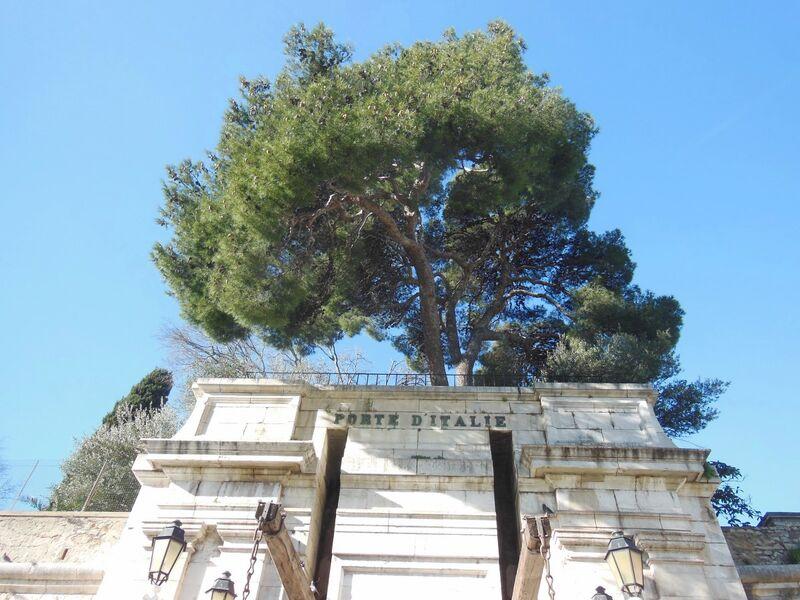 La nature dans la ville à Toulon - 1