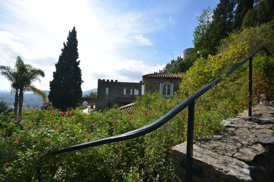 All the gardens of the world – Guided tour à Hyères - 1