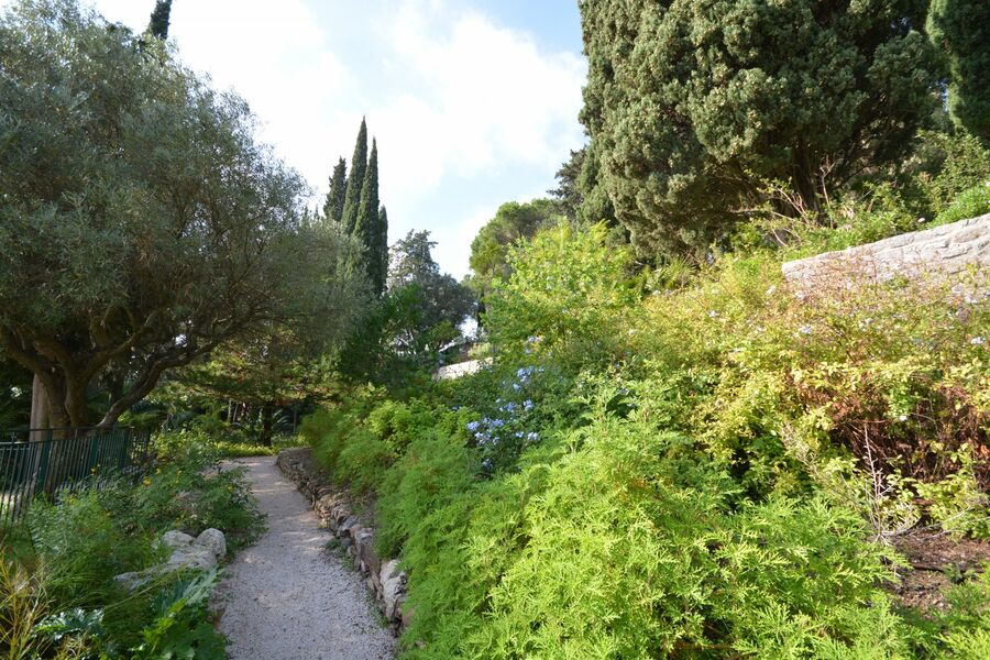 All the gardens of the world – Guided tour à Hyères - 3